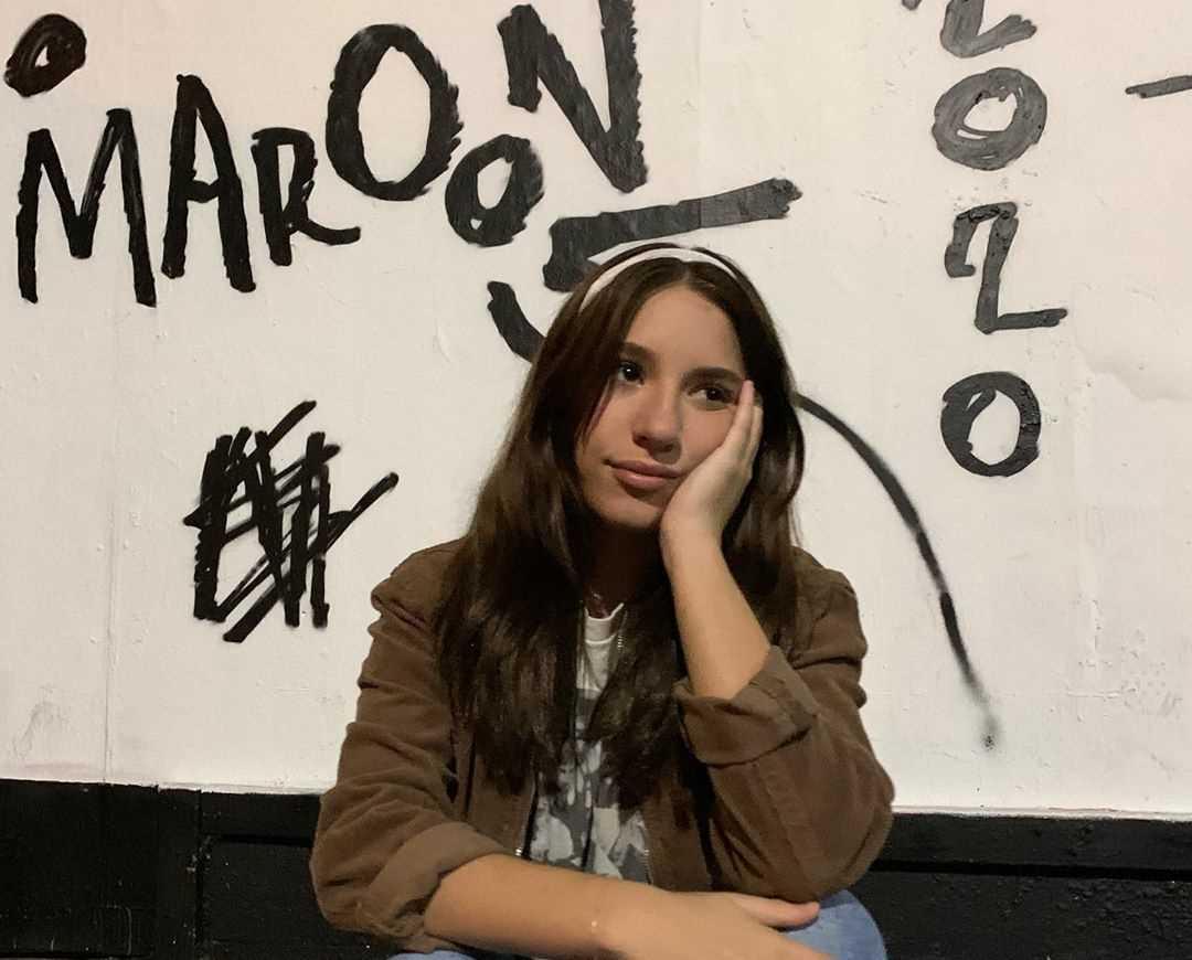 Mackenzie Ziegler's Instagram Live Stream from January 15th 2020.